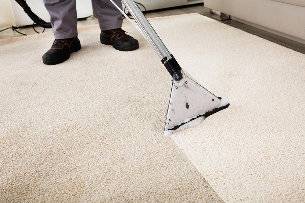 Let Tiger Paws clean your carpets